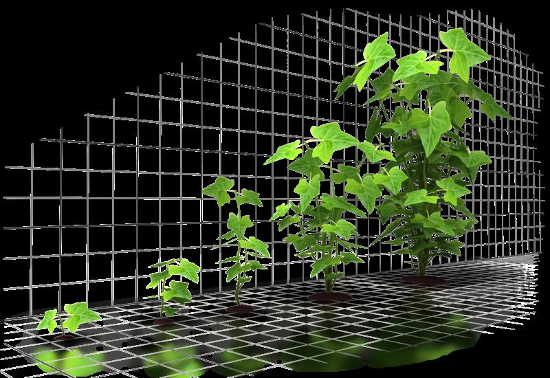 Six Incredible Ways to Grow Your Business through Digital Testing