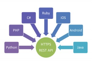 REST API and its Component